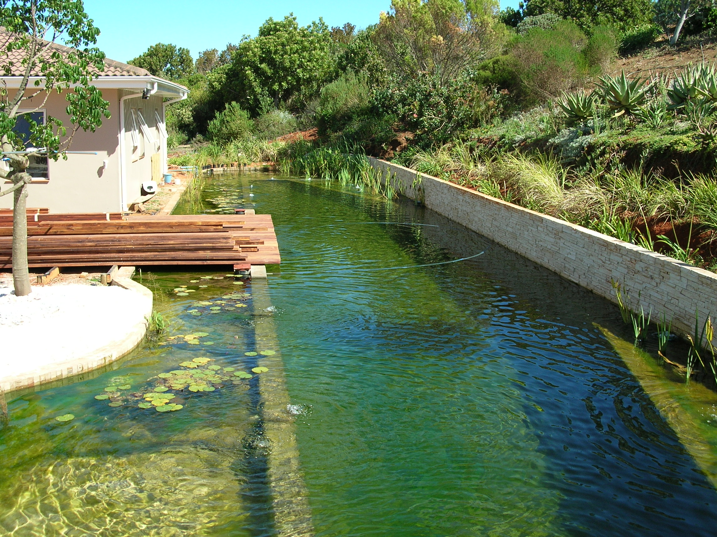 Eco friendly and chlorine free the true potential of - Natural swimming pool design ...
